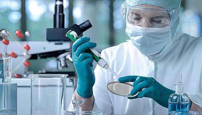 Лабораторна діагностика сальмонельозу