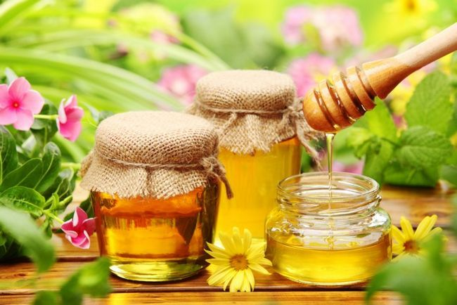 Мед при панкреатиті: явна небезпека або користь?