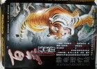 Китайський тигровий пластир